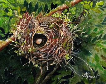 Tiny Bits of Nature - Abandoned Nest - Greeting Card