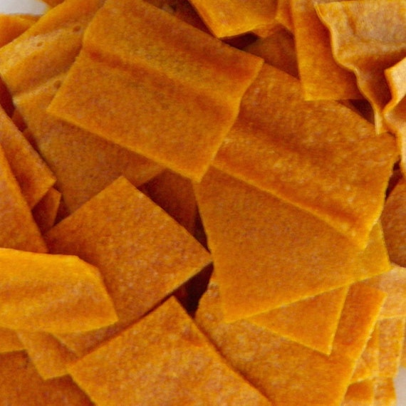 Apricot Ginger Agave Fruit Leather Bites - 2 oz. - GREAT for you AND your dog