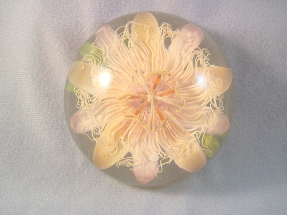 Beautiful Old Flower Paperweight SALE