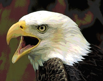 Bald Eagle Art, Southwestern Totem Animal, Digital Portrait Print, Woodland Animal, Wildlife Wall Hanging, Home Decor, 8 x 8, Giclee Print