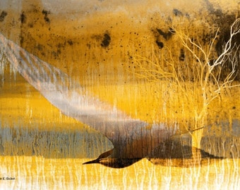 Flying Bird, Photomontage Art, Yellow Abstract Realism, Wildlife Wall Hanging, Home Decor, Rustic Decorative, Nature Landscape, Giclee Print