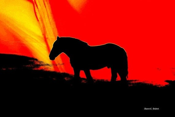 Southwestern Horse Art, Western Equine Silhouette, Texas Wall Hanging, Home Decor, Ranch Farm Animal, Sunset Sunrise, Giclee Print, 8 x 10