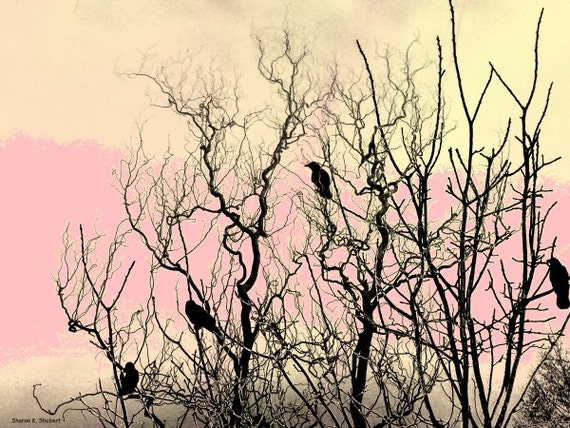 Bird Art, Silhouettes, Pink Yellow Black, Woodland Animal, Woods Forest Sunrise, Spring Home Decor, Wall Hanging, 8 x 10, Giclee Print