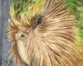 Kakapo Original ACEO Card