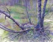 Lavender Spring Morning original watercolor.  Free shipping.