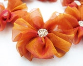 6 pcs- Flowers with Golden and  Fuchsia Organza  (change with light organza)