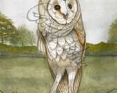Barn owl in Watercolour - A4 digital print