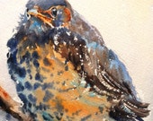 Baby Robin print of my Original Water Color