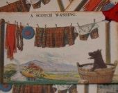Scotty Dog A Scotch Washing Gift Tags