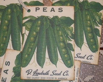 Sweet PEAS Gift Tags