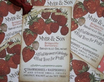 Vintage Berry Growers Catalogue Gift Tags