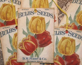 Vintage D.M. Ferry and Co 1894 Bulbs and Seeds Ad Gift Tags