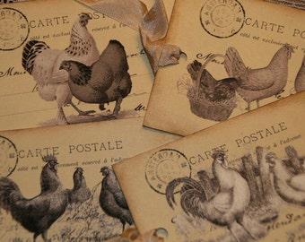 Roosters and Chickens Vintage Postcards  Tags