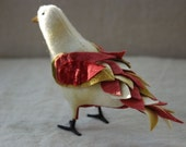 Wool Songbird - JAPAN