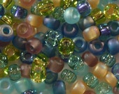 6/0 Miyuki Round Beads - Prarie Mix - 20 grams