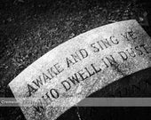 Awake and Sing Ye Who Dwell in Dust 6x9 photograph