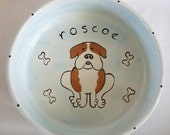 handpainted personalized ceramic large food and water bowl set