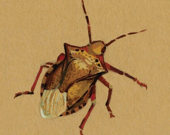 Stink Bug - brown paper planet fine art print