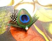 Peacock wedding bridesmaid headpiece prom hair accessories prom head piece bridesmaid gift bridesmaid hair piece