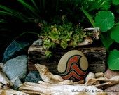 Nature Still Life Photograph  Wall Art Photo with Driftwood Rocks Limited Edition Signed Numbered Unique Green and Red Photograph