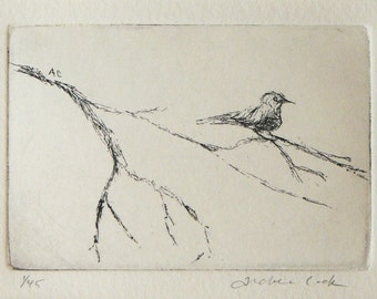 original etching of a bird on a branch