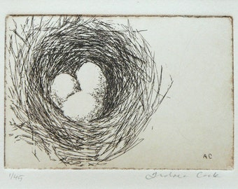 original etching of a birds' nest with 3 eggs