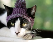 Earflap Cat Hat in Purple and Grey