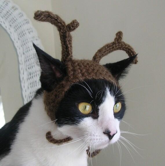 The Reindeer Cat Hat