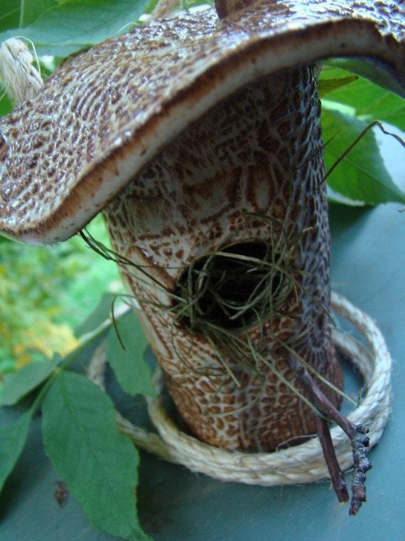 Texture Texture Texture A Bird House