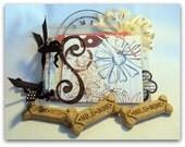 Mini Acrylic Album 5 x 6 with fun embellishments