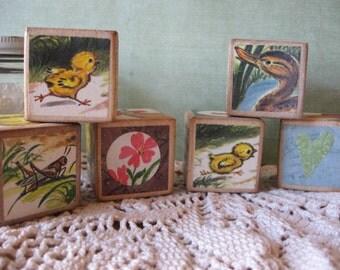 Set of Six Vintage Style Altered Medium Wooden Blocks Chicken Little