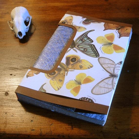 Fall Gossamer Butterfly Journal, Notebook or Guest Book