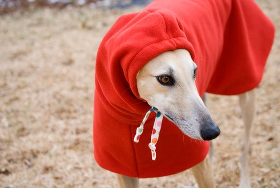 Dog Winter Coat with Drawstring Snood - Red