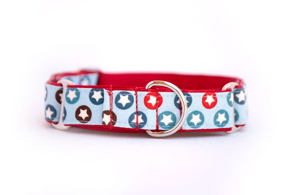 1 inch Martingale Collar - All Stars - Free Shipping