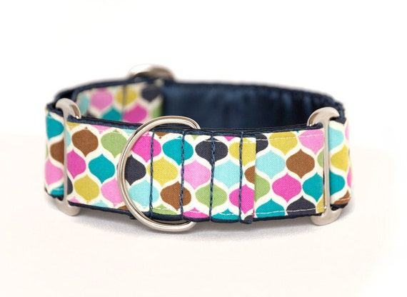 1.5 inch Martingale Collar - Casbah - Free Shipping