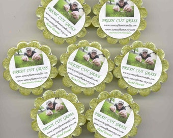 4 FRESH CUT GRASS Scented Tarts Melts Hand Poured Highly Scented
