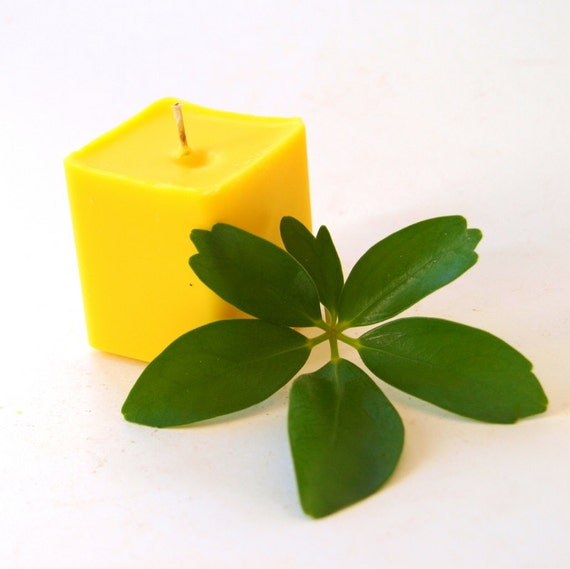 Pure Soy Square Votives with Energizing Lemongrass Aromatherapy Essential Oil - Set of 3