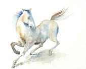 White Horse Watercolor Painting - 9x12 Fine Art Original Painting