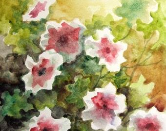 Wild Flowers - original watercolor painting