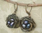 Nest Earrings Bird Peacock Pearls Wire Wrapped Nest Earrings Peacock Earrings Birdnest Jewelry Brass Nest Earrings