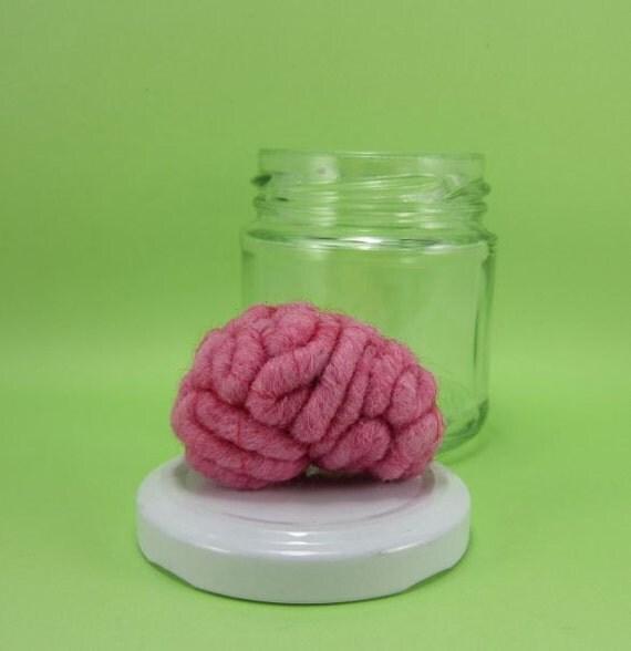 Brain in a Jar Raspberry Anatomical Curio 2R