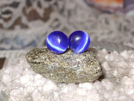 Deep Cobalt Blue Fibre Optic Stud Earrings Earings Titanium Ear Post and Clutch Hypo Allergenic 8mm Round Cats Eye
