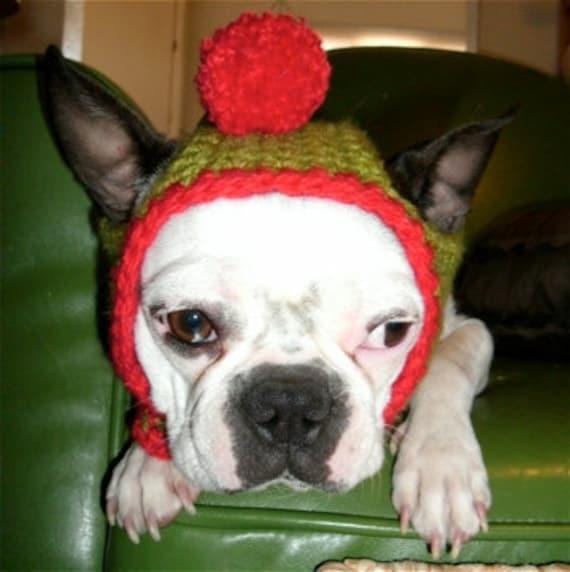 Dog Hat Holiday Elf in Medium