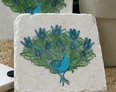 Peacock  Absorbent Tile Coasters, Set of 4