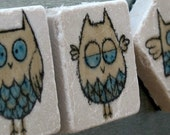 Woodland Wide Eyed Owl Magnets - Set of 4 - Ready to Ship