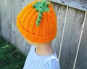 Pumpkin Hat - Orange and Green YOU CHOOSE SIZE Newborn, 3-6 months, 6-12 months, Toddler/Child