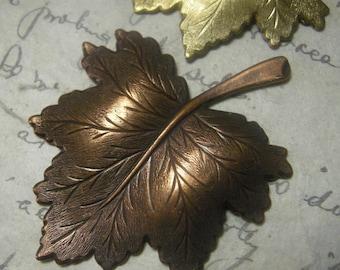 Autumn Leaves - 1 Large Metal Stamping -