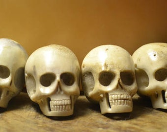 Hand Carved Skull Beads - Six Large Beads - Carved in Bali from Naturally Shed Deer Antler