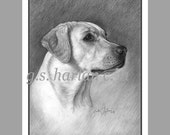 Labrador Retriever Dog Fine Art Note Cards - Set of EIGHT