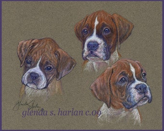 Boxer Puppy Fine Art Note Cards